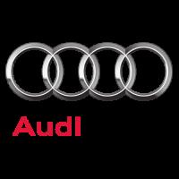 Audi Kennzeicheneinleger